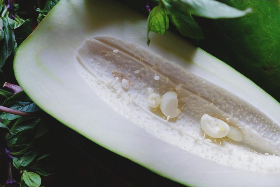 papaja(3)