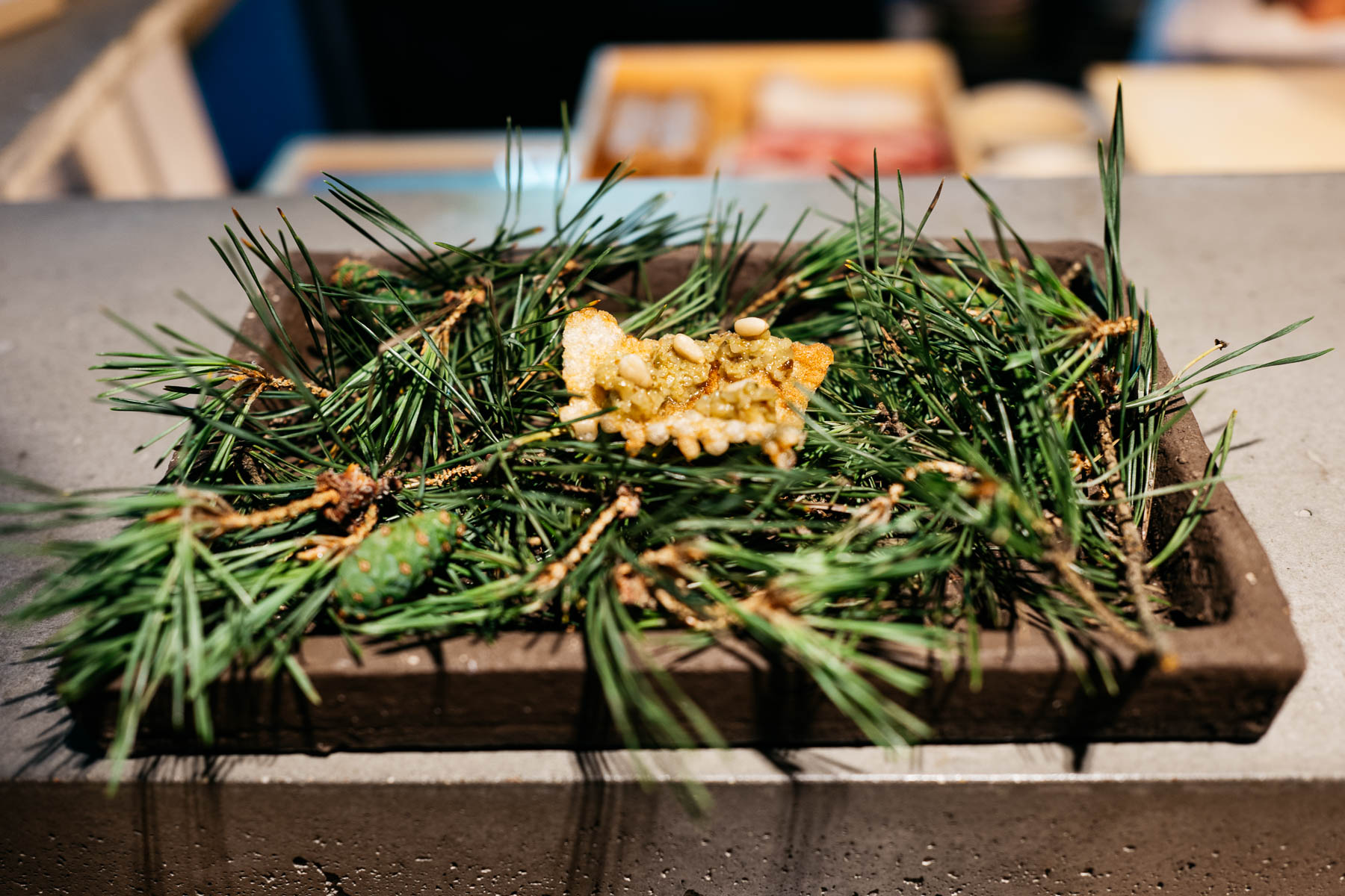 Szyszka sosnowa / tapioka / orzech piniowy