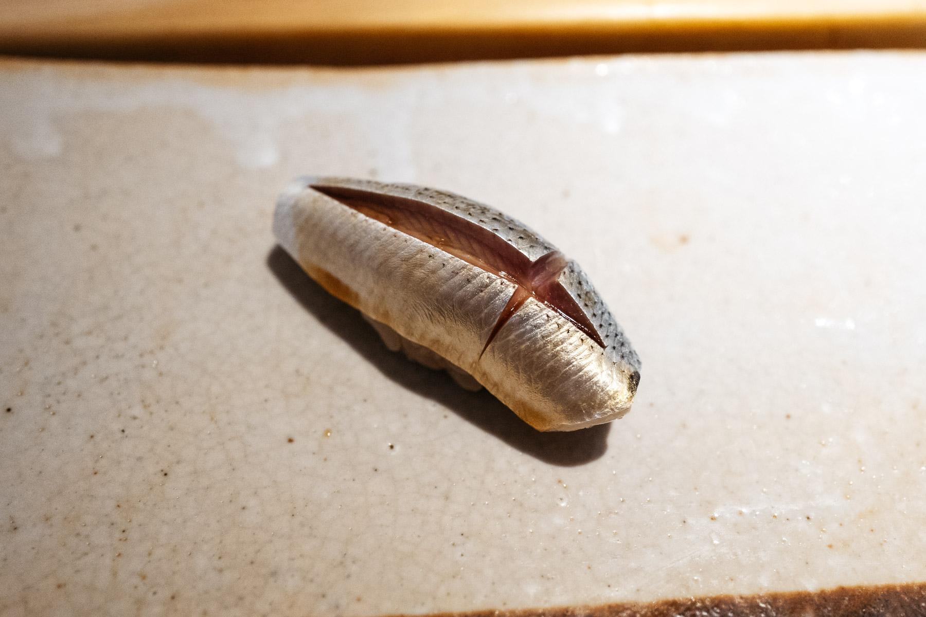 Kohada (dorosoma)